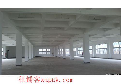 大型商场,超市,餐厅,家具,4s店,幼儿园,7200平出租