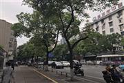 人民中路繁华地段万人社区旁临街旺铺优转