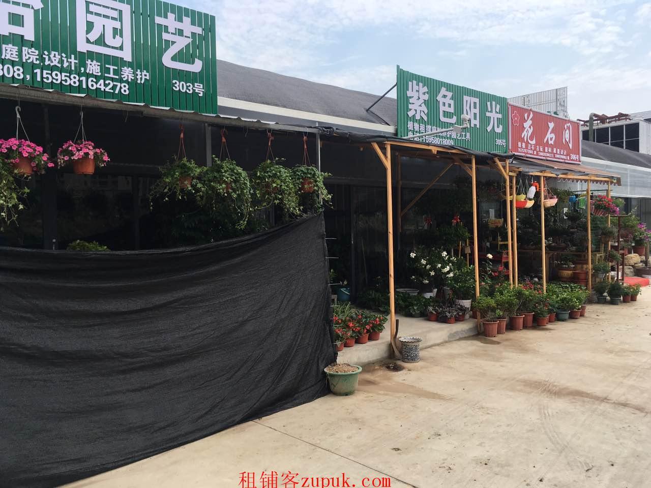出租宏丰花卉市场新铺,全新装修,价格实惠