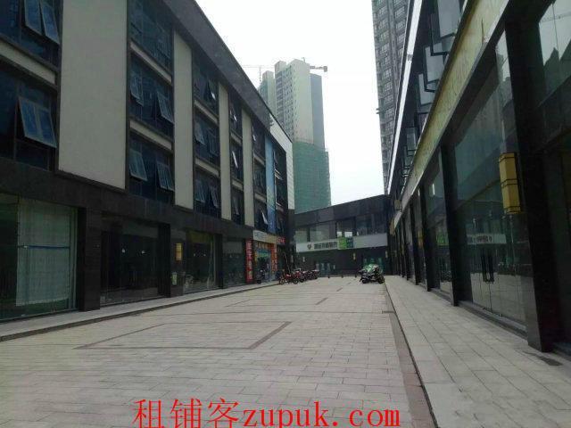 中心地带,商业街,附近写字楼学校