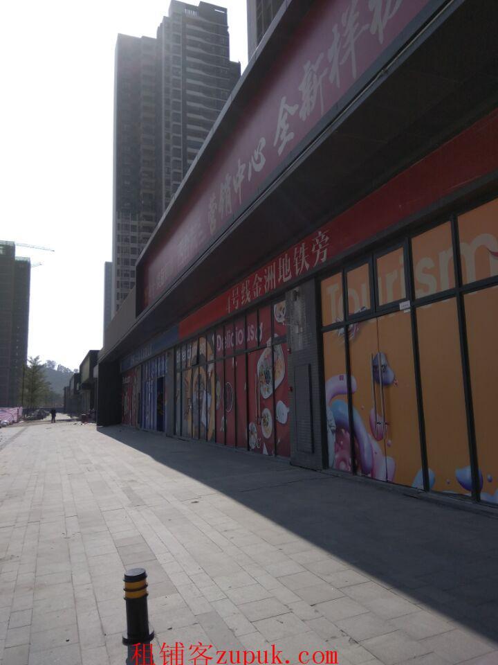 4号线金洲地铁口附近商铺
