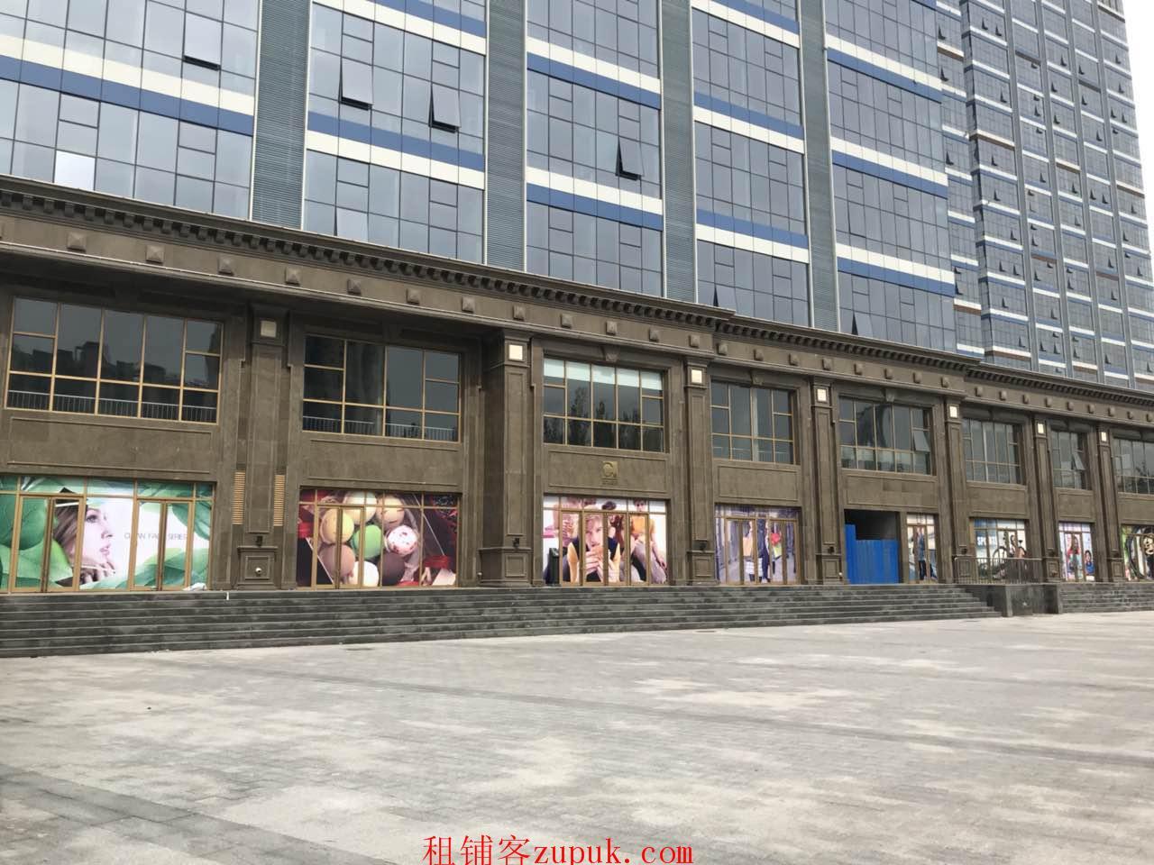 出租西青中北万汇文化广场商业街商铺