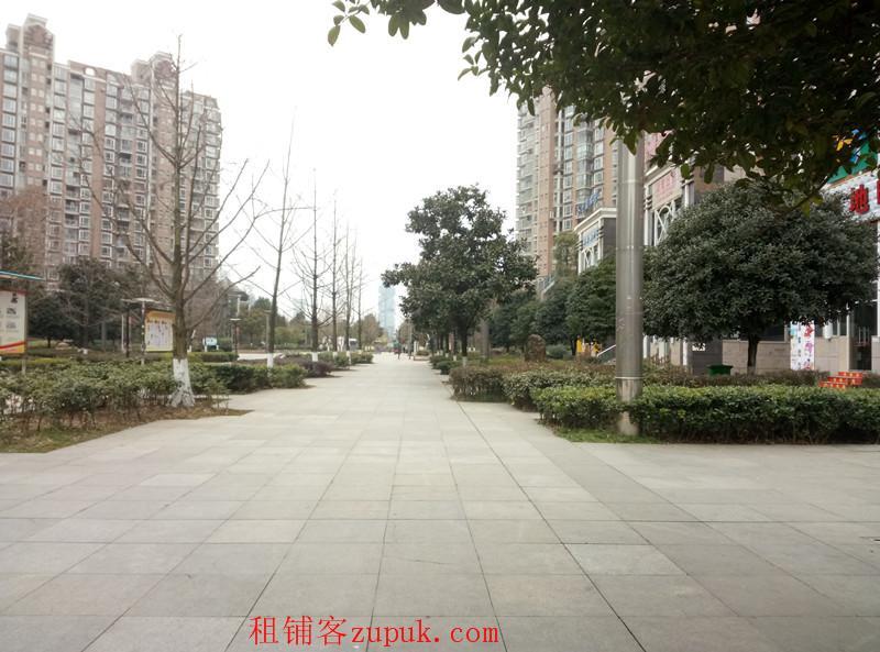 八匹马金元国际70平旺铺房东直租