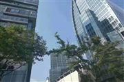 普陀区曹杨路地铁站4号口,门口公交站,奶茶旺铺