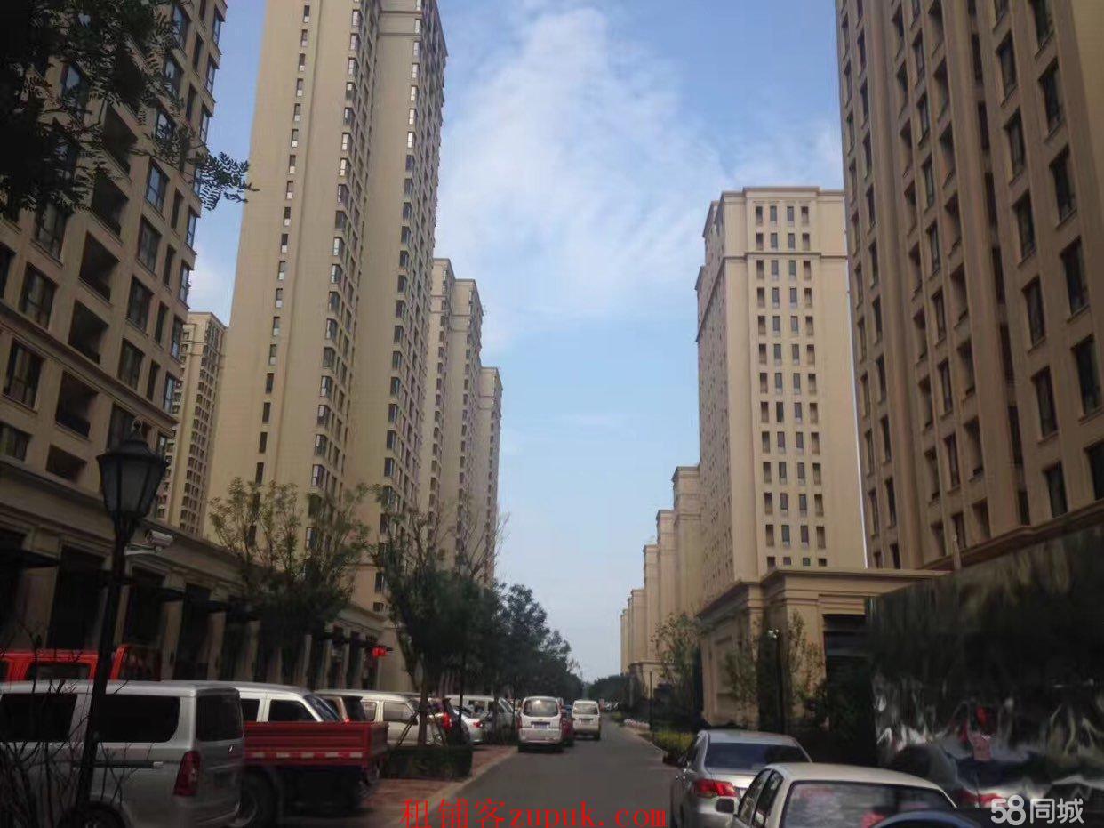 天津北辰纯一层底商半湾半岛商业街沿街店面
