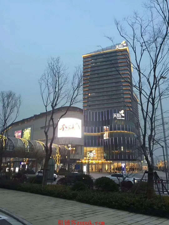 东方路 商业繁华地段 96广场对面 业态不限
