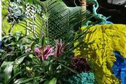 全国首个环保植物主题迷宫可做密室