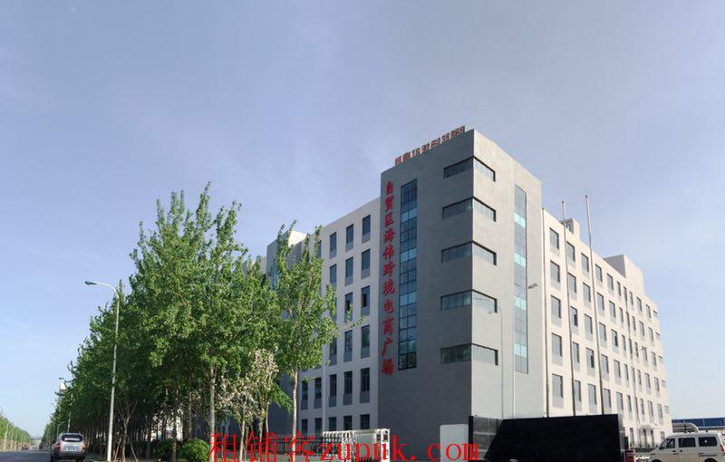 天津自贸区跨境电商综合大楼出租、出售