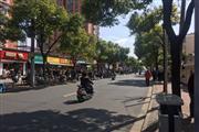 长宁东渚安浜路沿街小铺 饮品执照 客流大消费强