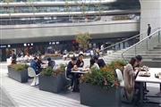 虹桥园区沿街食堂 上万办公人群 一铺在手三代不愁