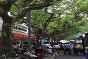 杨浦沿街一楼精装修餐饮旺铺 执照齐全 大房东直租