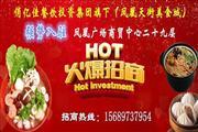 凤凰广场天街美食城火爆招商 强势入驻