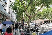宝山顾村核心成熟商圈沿街十字路口旺铺 执照齐全