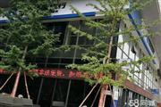 招租-升龙城8号院A、B写字楼楼下