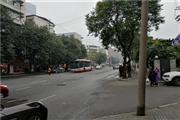 锦江区莲桂南路 老小区环绕+天然气 盈利面馆转让