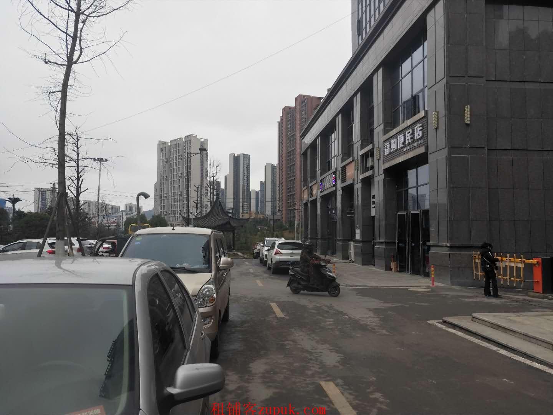 未来方舟F12组团小区门口旺铺直租