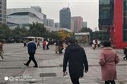 滨江丹枫路江晖路办公酒店配套美食档口招租 客流超大