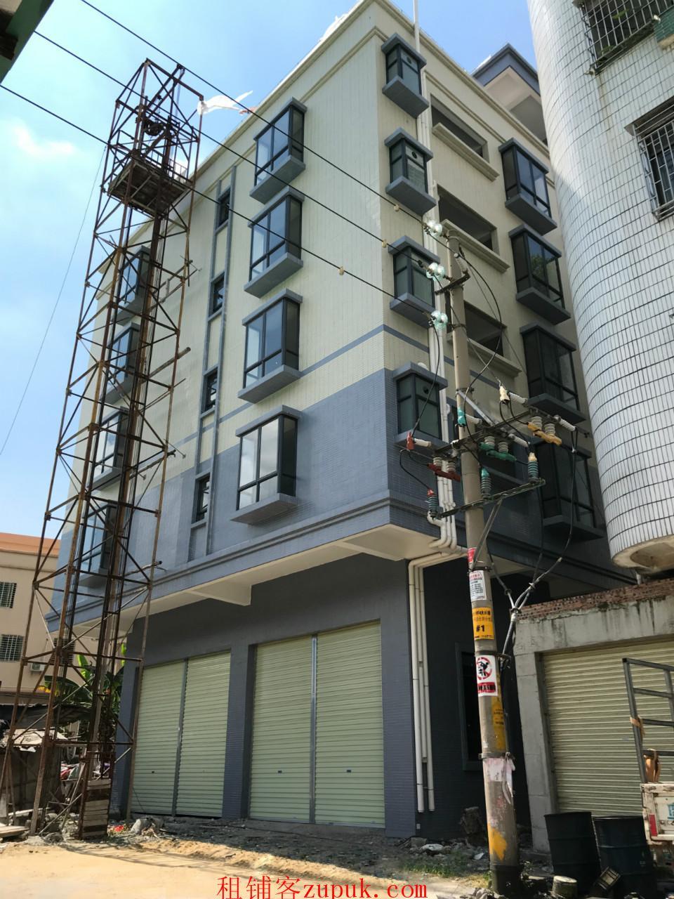 南沙大涌 地铁4号线大涌站附近整栋房屋出租 可做公司宿舍