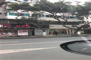 城南成熟商圈临街商铺无转让费房东直租
