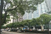 (出租) 川沙正沿街重餐饮旺铺业态不限执照齐全酒店办公配套