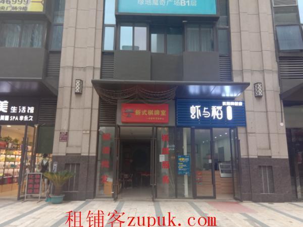 四新江城大道67平米休闲娱乐整转或空转