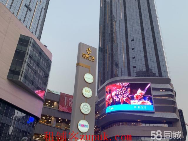 (出租) 出租九龙坡杨家坪中迪广场
