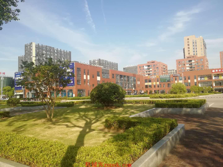 上海市嘉定区南翔新城嘉天下商业广场隆重招商