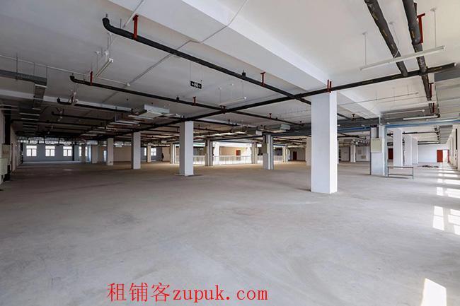 自贸区23000平方米写字楼仓库展厅出租出