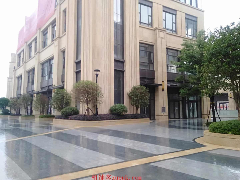 商业街八面风铺面出租业态不限