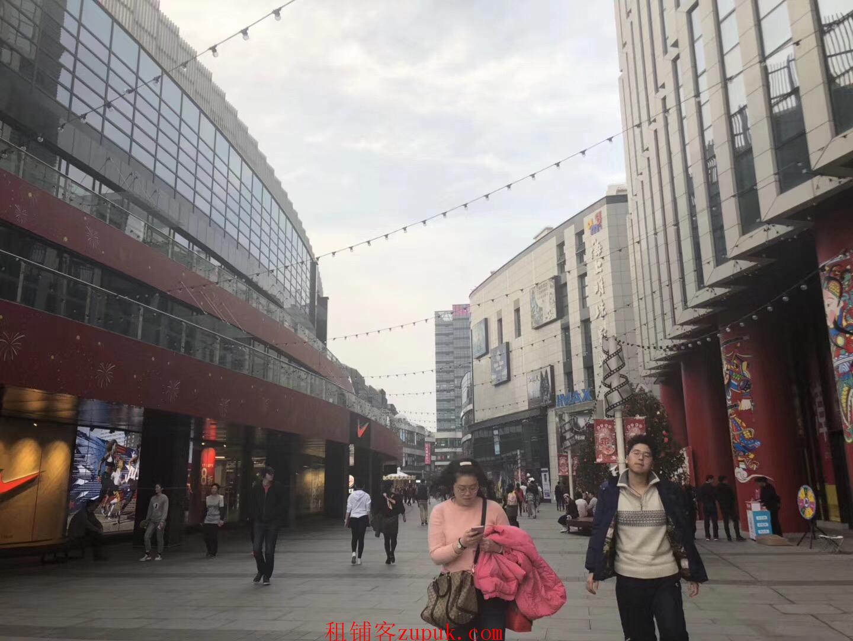 闵行唯一网红室内风情街对标日月光招商奶茶甜品各类小吃