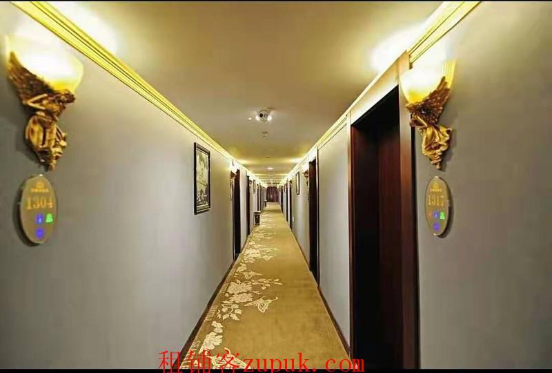 财富广场豪装盈利酒店低价急转或合伙