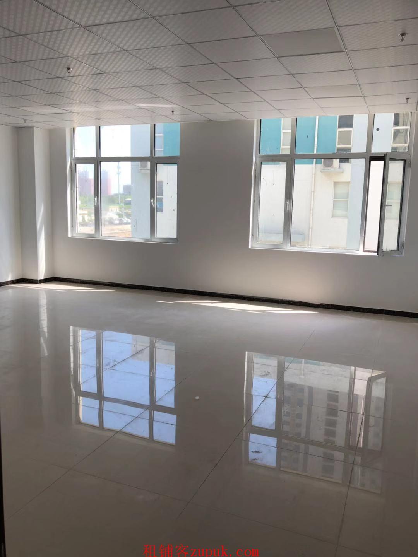 仓丰路1000㎡商务办公楼出租
