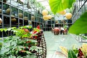 创新中国产业园1至100人办公室 卡位出租拎包办公