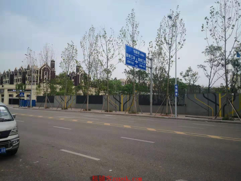 重庆渝北国博城悦融路巴蜀学校旁商铺