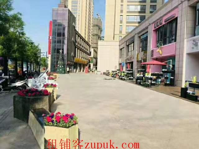 墨河南岸商业街