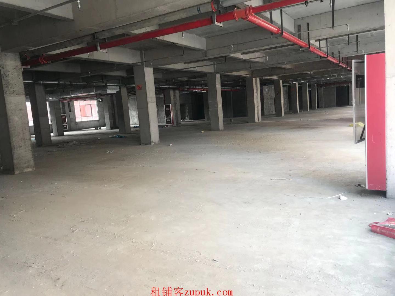 梨园路商业 单层九千平招租 面积可分割