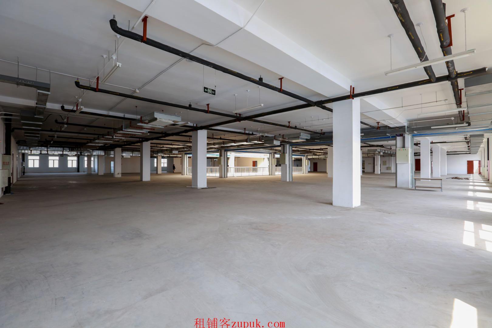 自贸区保税区恒温仓库写字楼展示展销大楼出租出售