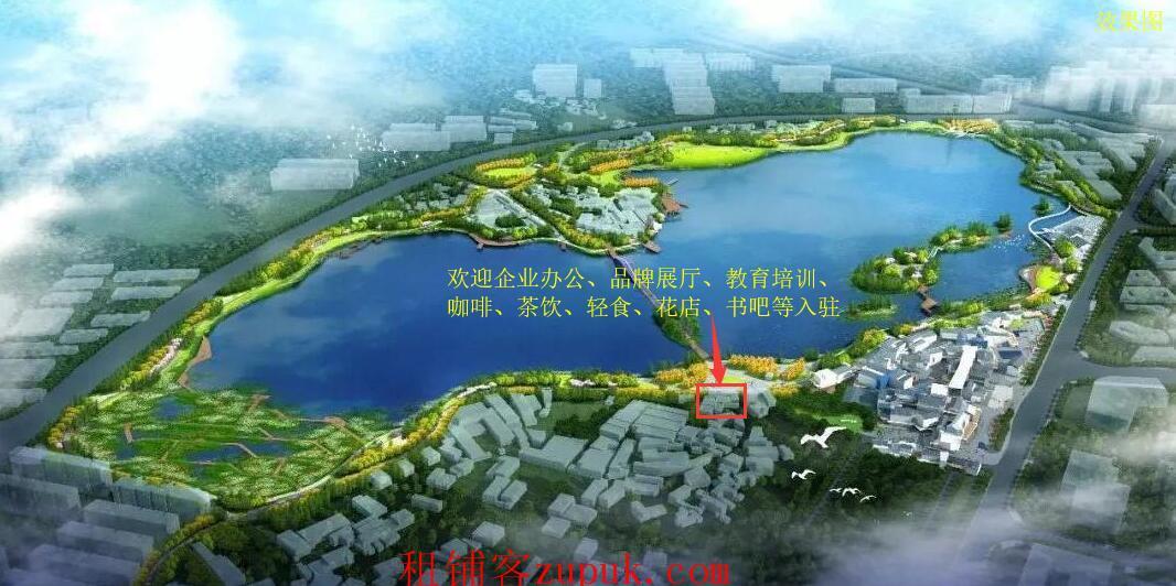 后湖国际艺术区湖景独栋商墅招租