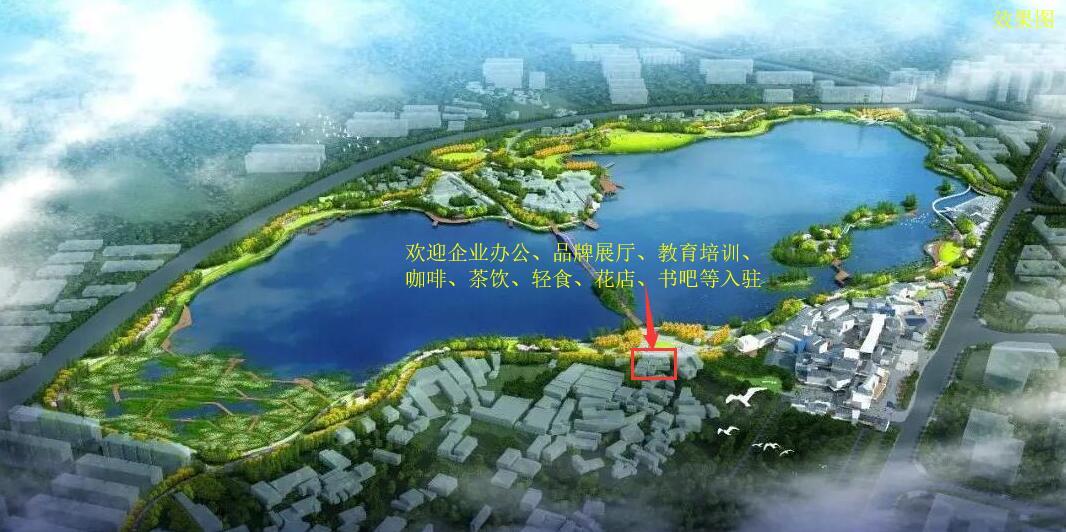 后湖国际艺术区湖景独栋商墅招租(面积可在20-700㎡间自由划分)