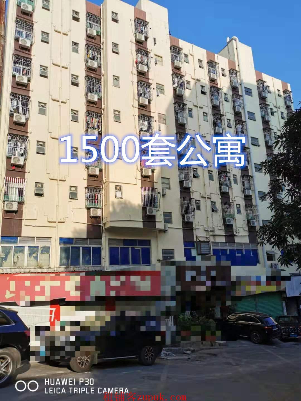 南山1500户公寓小区转角旺铺,一手房东可签(独)家协议,