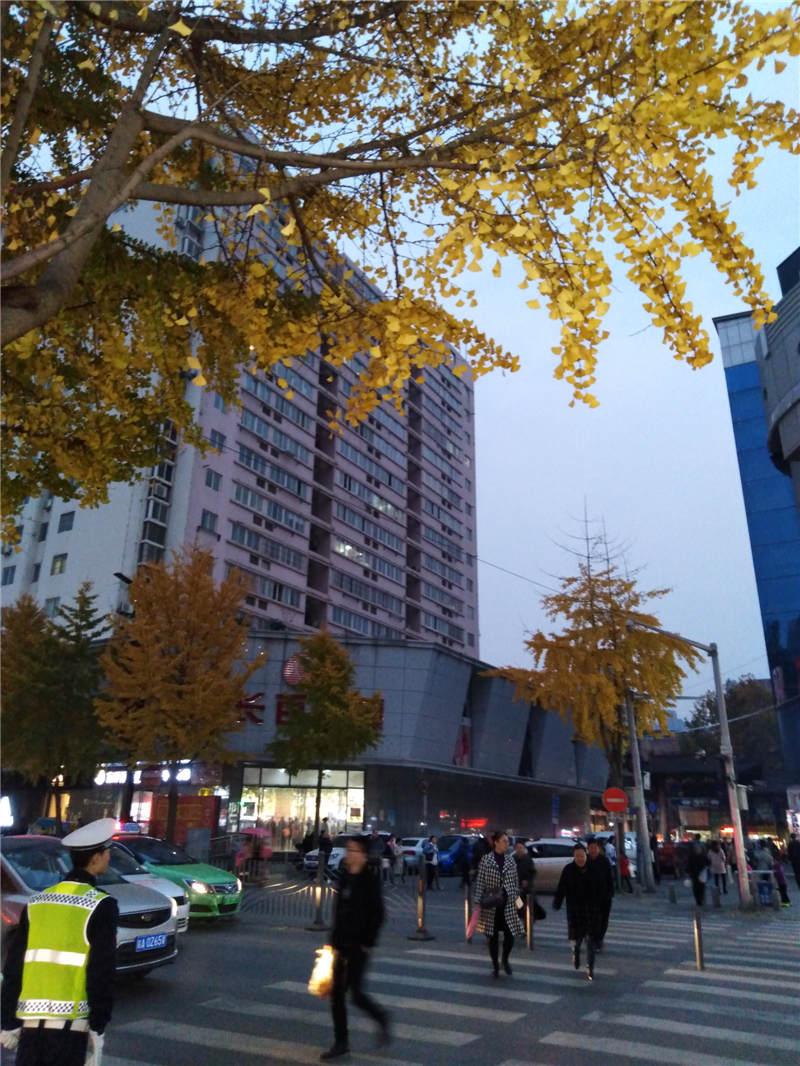 西安长安区地铁二号线航天城站东餐饮+教育+宾馆看过来