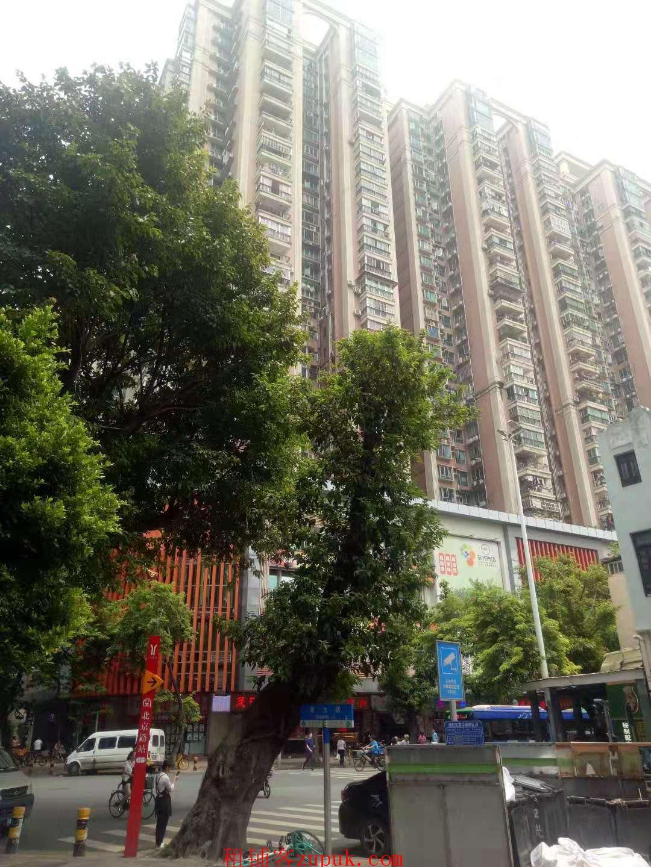 超低租金沿街一楼,小区公寓写字楼配套消费力强
