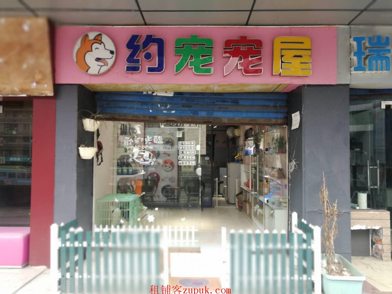 宠物店转让位于江北区观音桥临街门面