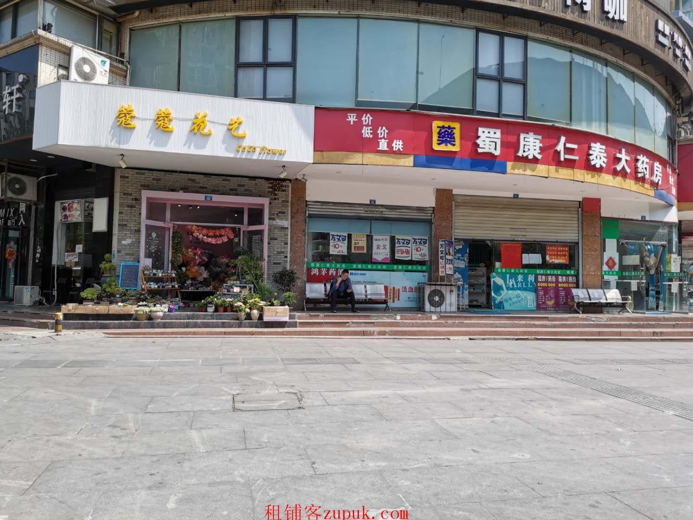 带外摆 文化宫西南财大金沙车站旁 5万人住宅社区 加写字楼