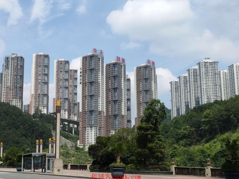 房东直租未来方舟风情商业街沿河门面