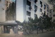 北三环独栋写字楼3900平米空置招租