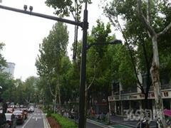 北京东路主干道 双门面出租中市口非常好
